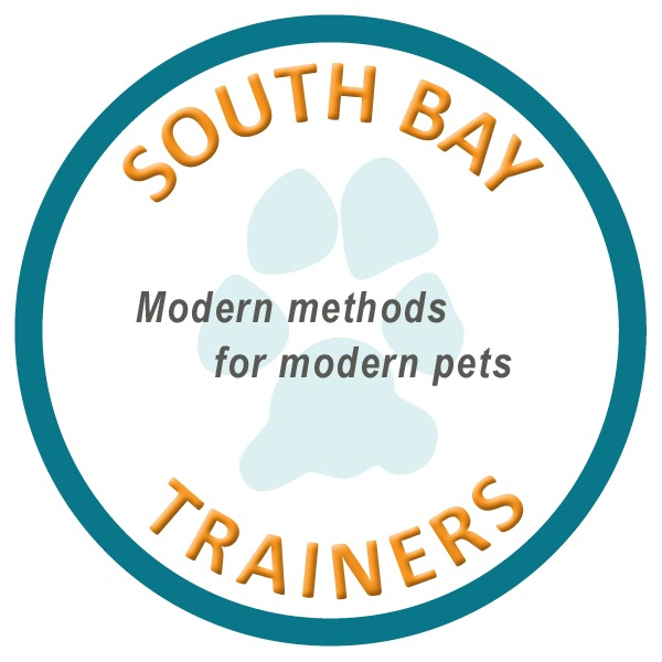 South Bay Trainers